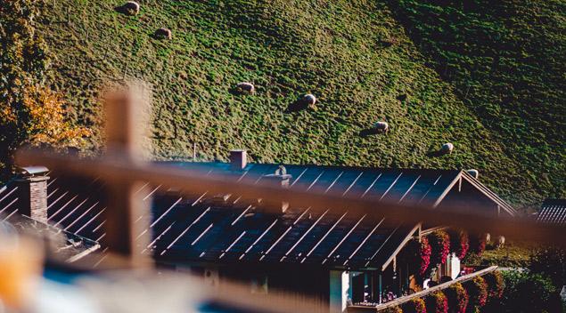 Das Nachbarhaus gesehen von der Terrasse
