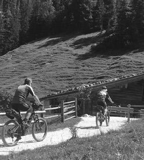 Radfahrer von Hinten vor der Alm