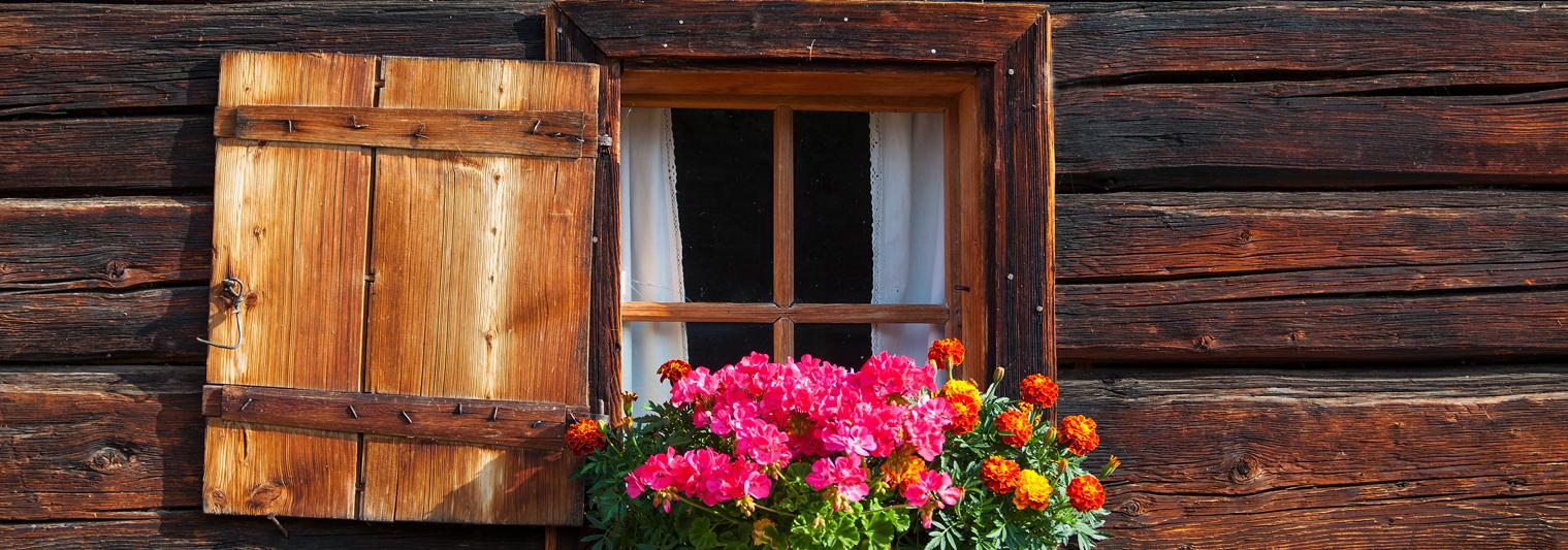 Almfenster mit Blumen