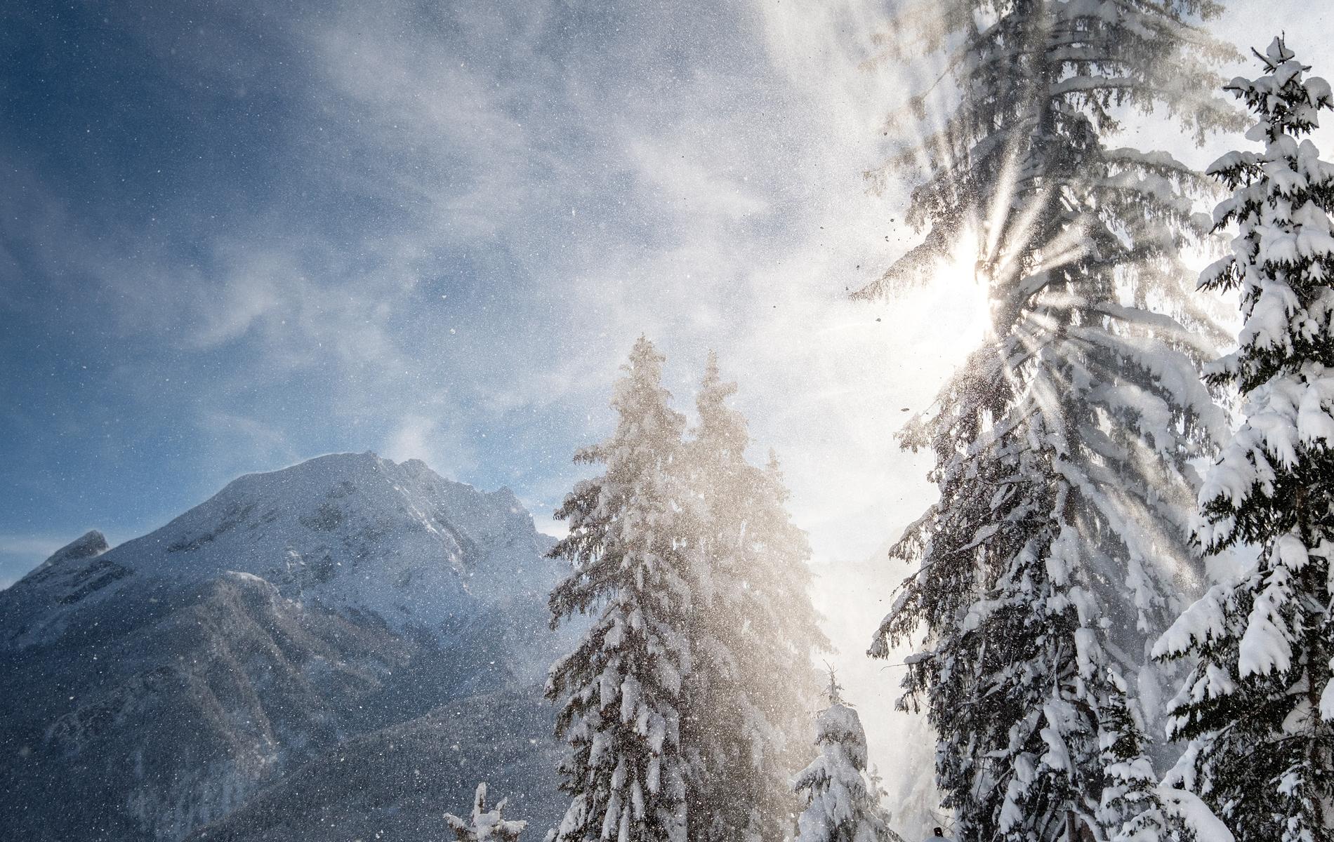 Winter im Rehlegg